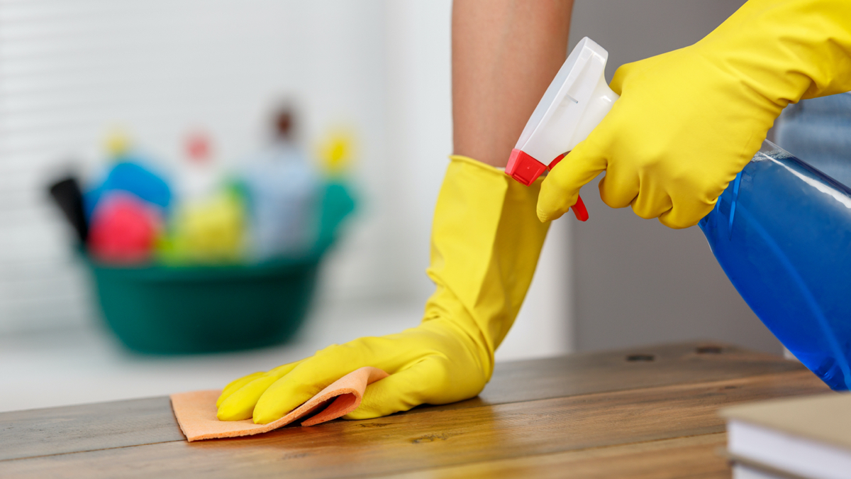 1 regular domestic cleaning arlo cleaning services