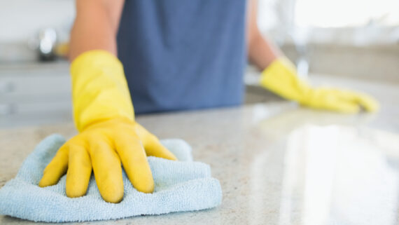1 regular domestic cleaning arlo cleaning services2