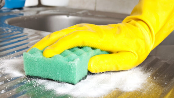 5 domestic deep cleaning arlo cleaning services